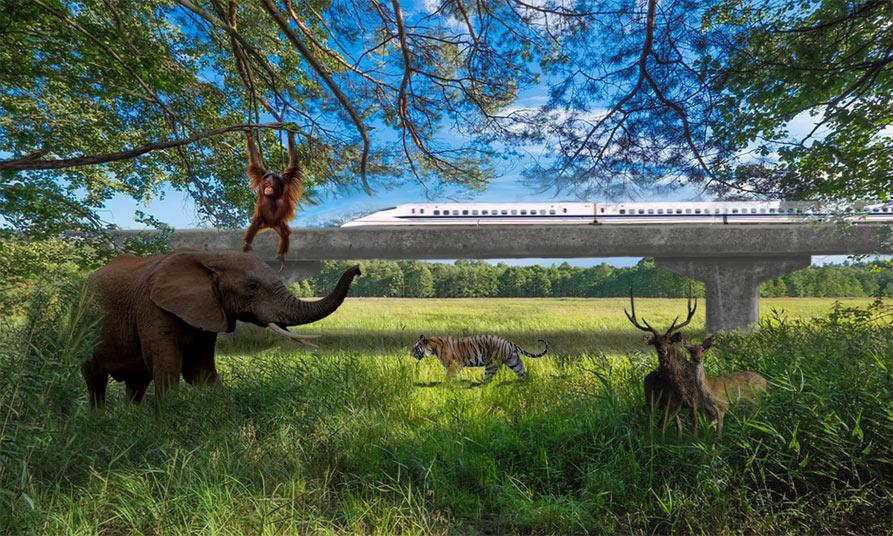 Photo: The East Coast Rail Link: A nature-loving artist's impression.