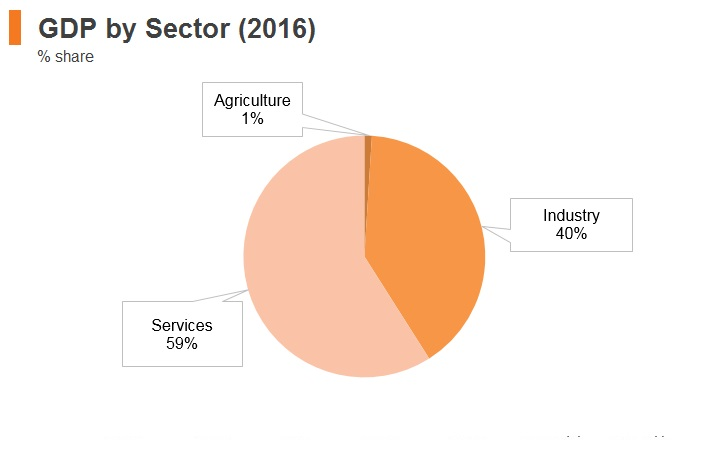 Graph: UAE GDP by sector (2016)