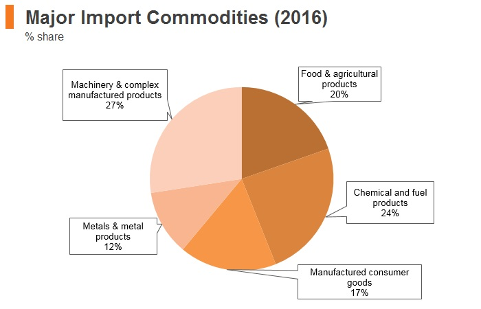 Graph: Egypt major import commodities (2016)