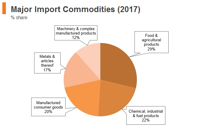 Graph: Egypt major import commodities (2017)