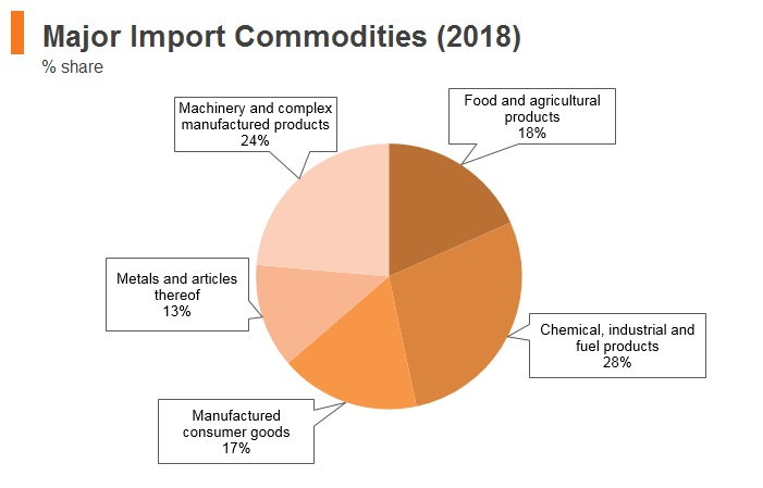 Graph: Egypt major import commodities (2018)