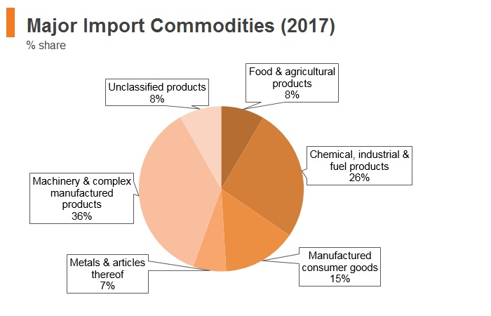 Graph: South Africa major import commodities (2017)