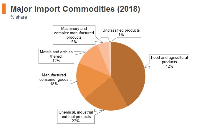 Graph: New Zealand major import commodities (2018)