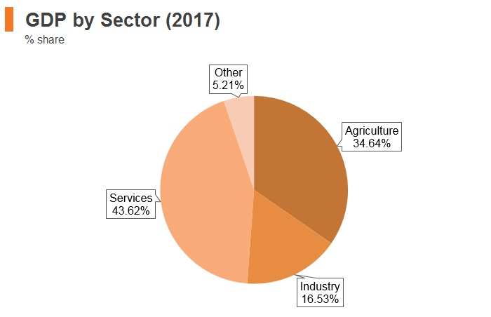 Graph: Kenya GDP by sector (2017)