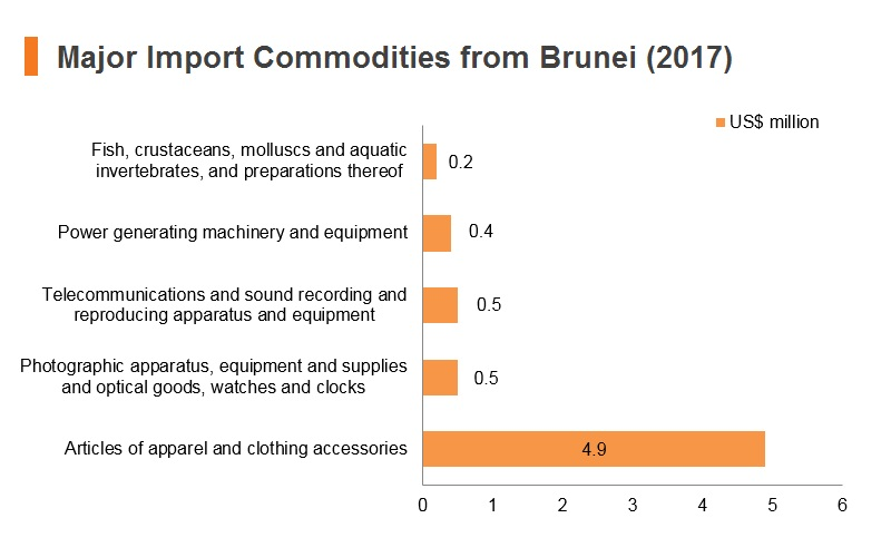 Graph: Major import commodities from Brunei (2017)