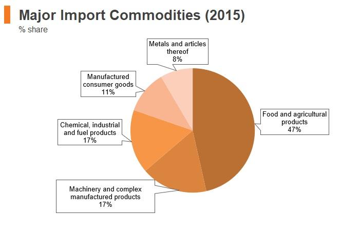 Graph: Yemen major import commodities (2015)