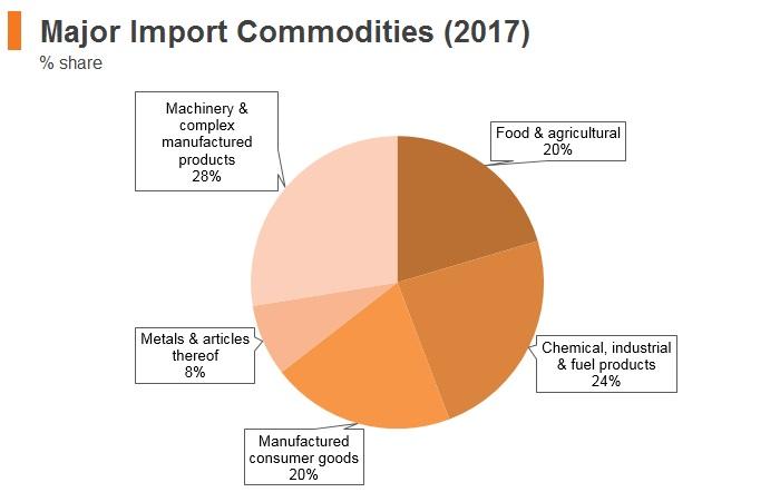 Graph: Maldives major import commodities (2017)