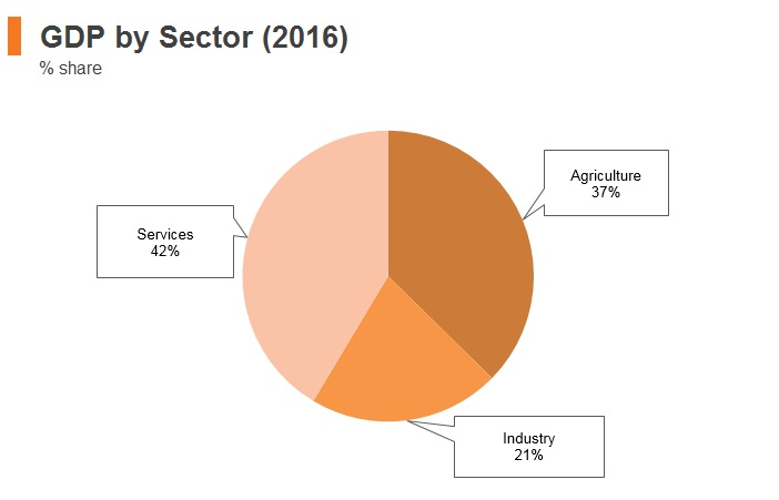 Graph: Ethiopia GDP by sector (2016)