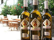 Photo: Spanish La Gitana brand could attract white wine drinkers.