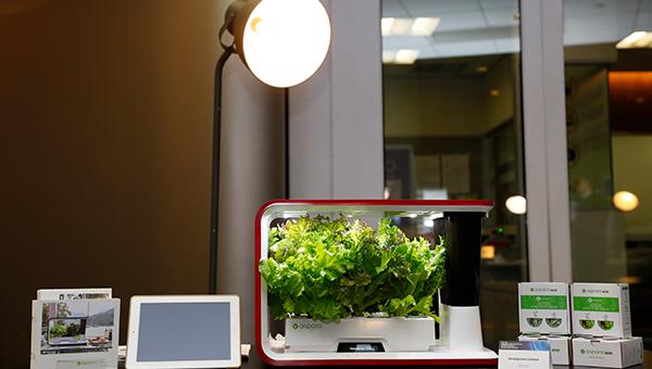 Aspara智能家用水耕种植机