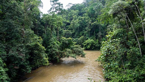 乌鲁淡布隆国家公园