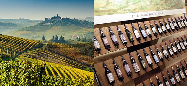 巴羅洛葡萄莊園及葡萄酒
