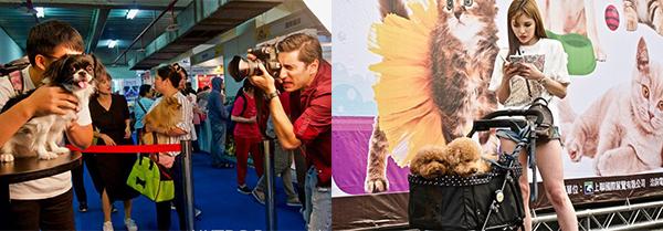 台北寵物用品博覽會暨台灣貓節