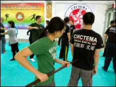 Unlike other forms of martial art, Systema is more about principles than technique