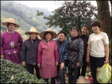 Mingcha sources tea directly from tea farmers on the Chinese mainland