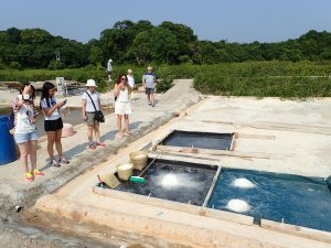 Visitors explore the newly operational salt pans during an AdventuretoursHK guided tour