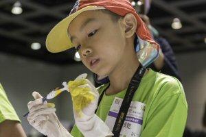 Children aged nine to 15 create 3D bird designs