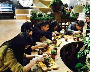 A cultivation class at a bottle garden shop