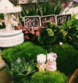 Wedding weeds: bespoke betrothal botany