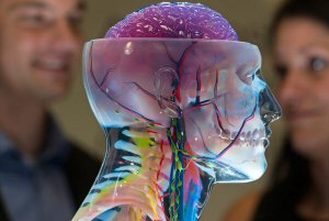 3D-printed medical solutions from Stratasys