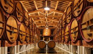 An East Meets West supplier's cellar