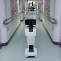 The Temi robot