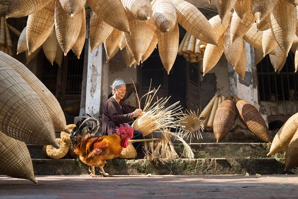 Vietnam Looks to Meet Global Demand for Sustainable