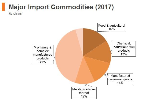 Graph: Saudi Arabia major import commodities (2017)