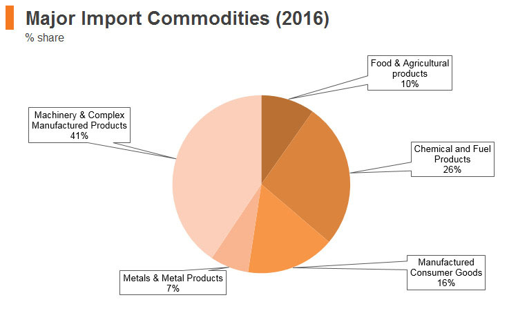 Graph: South Africa major import commodities (2016)