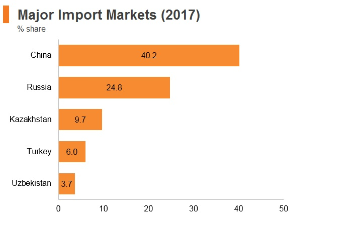 Graph: Kyrgyzstan major import markets (2017)