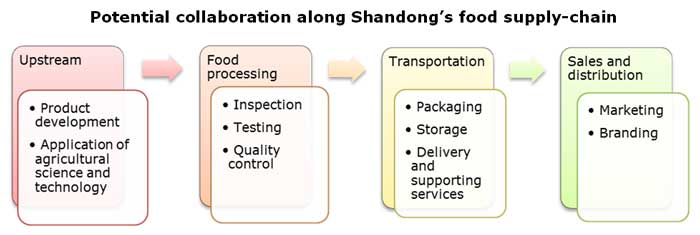 Chart: Potential collaboration along Shandong's food supply-chain