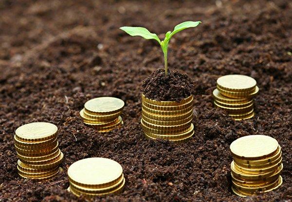 相片:海外投资计划需要资金启动