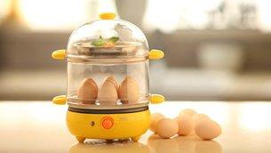 相片:小熊电器的煮蛋器