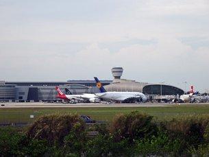 相片:由迈阿密国际机场飞往拉美国家的航班数量较美国其他机场为多。