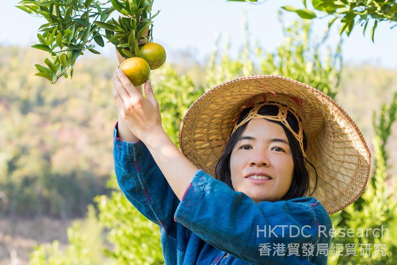 相片:内地有机食品市场方兴未艾(一)
