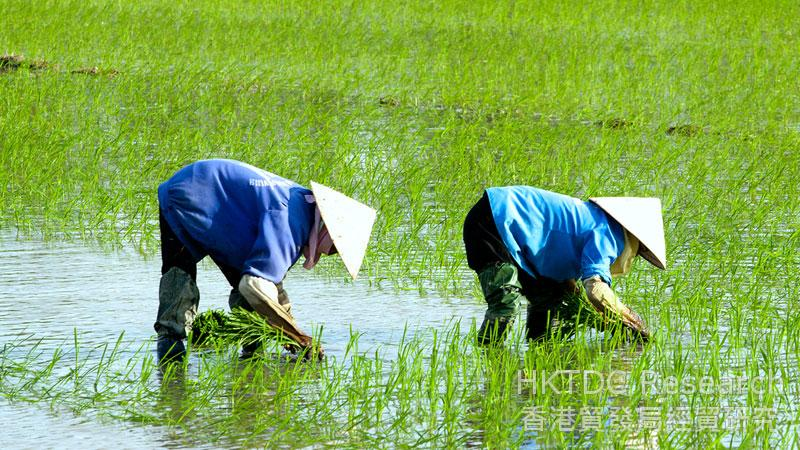 Vietnam's Increasing Demand for Environmental Services | HKTDC
