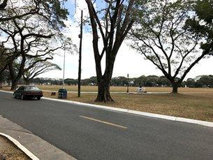 圖: 克拉克自由港區的綠色環境。