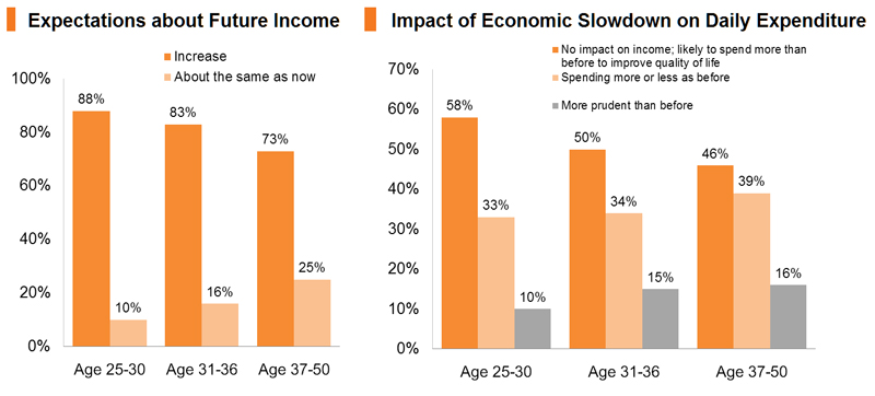 Chart: Expectations about Future Income_Impact of Economic Slowdown on Daily Expenditure