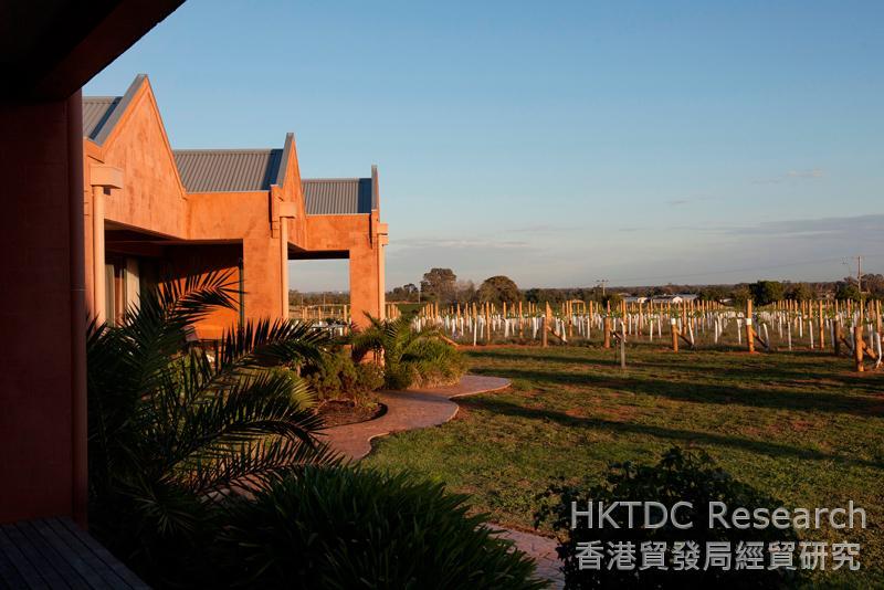 相片:澳洲瑞德格兰酒庄。