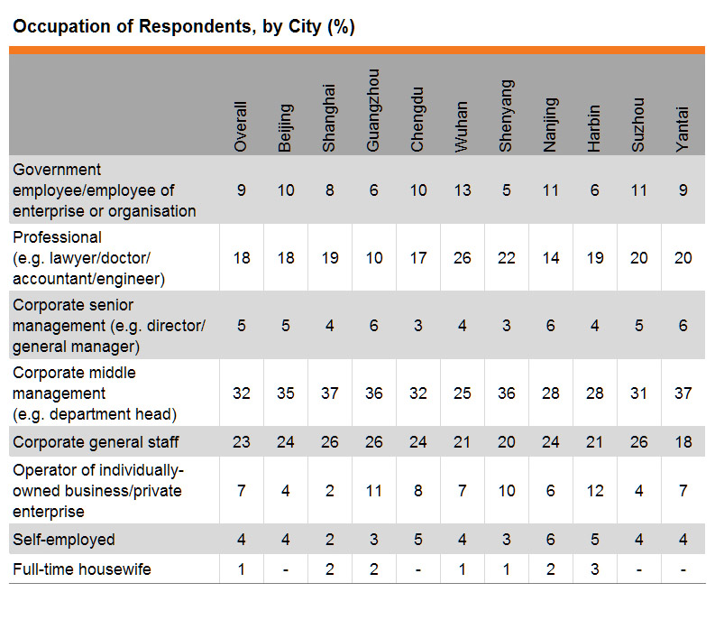 Table: Occupation of Respondents, by City (%)