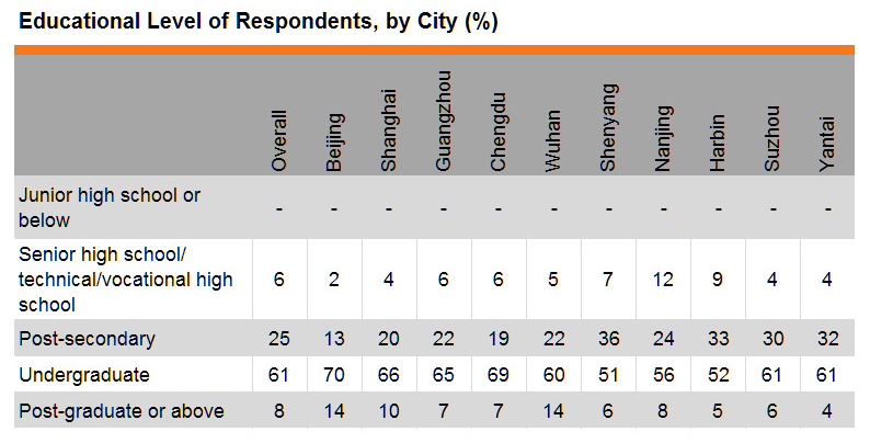 Table: Education Level of Respondents, by City