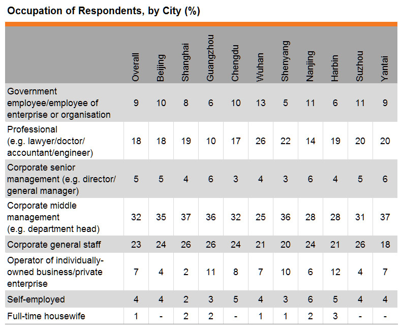 Table: Occupation of Respondents, by City