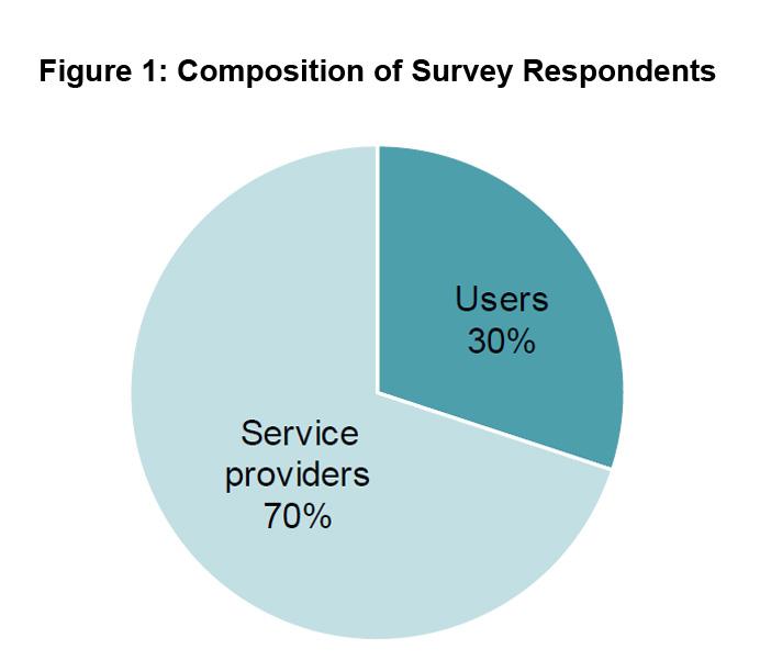 Figure 1: Composition of Survey Respondents