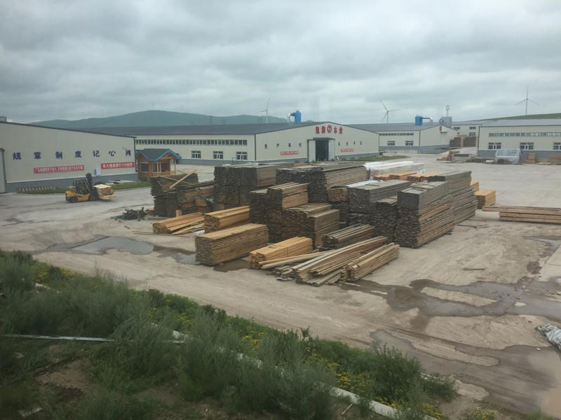 相片:凯润木业位于进口资源加工园区内的厂房。