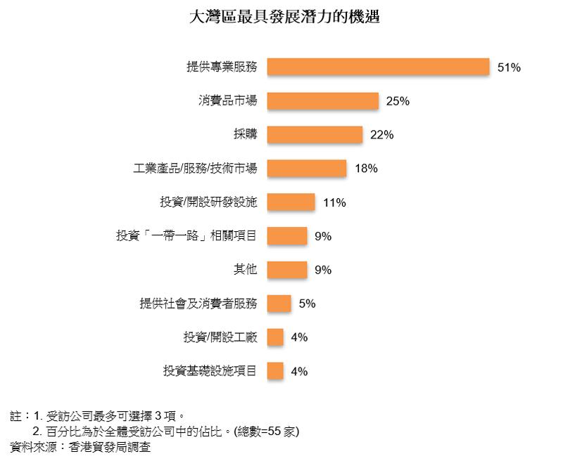圖表:大灣區最具發展潛力的機遇