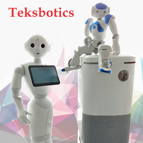Teksbotics (Hong Kong) Limited