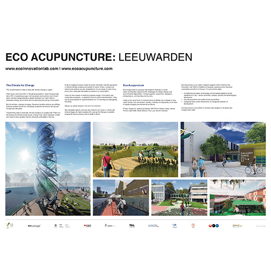 Eco-Acupuncture International
